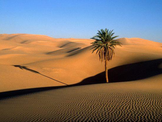 Sahara Desert (resized).jpg