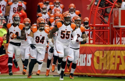 Burfict leads defense (440x284)