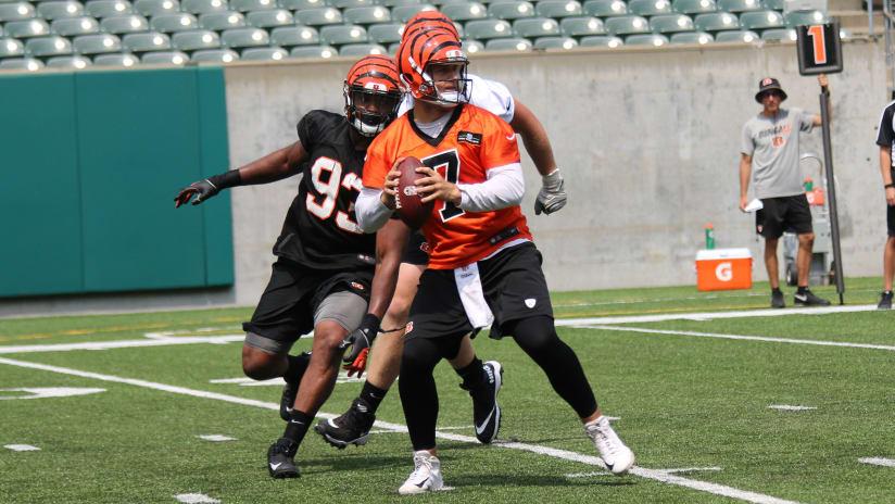 Matt Barkley Bengals